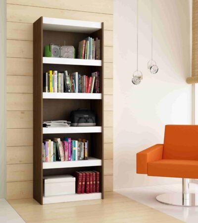 BL 14.192 Bookcase